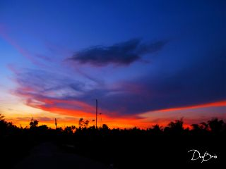 photography nature summer sunset