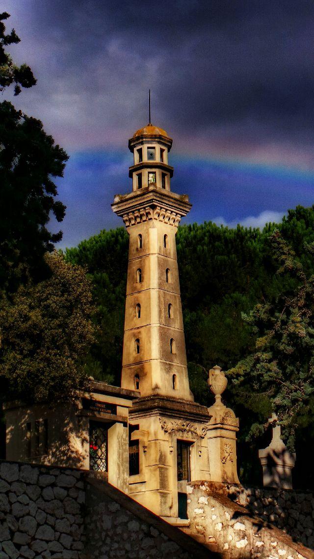 rainbow pictures