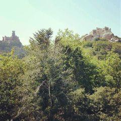 sintra castles portugal hollidays