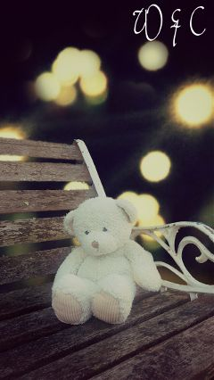 bokeh teddy photography effect twilight