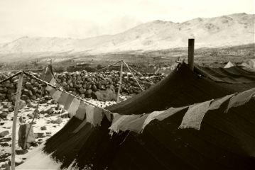 ladakh travel india