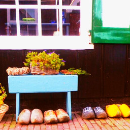 cute vintage colorful holland photostory