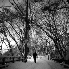 korea black & white snow nature people