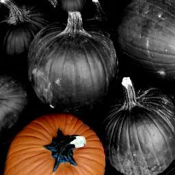 emotions black & white food fall